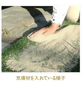 触って気持ちいい芝