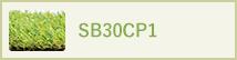 SB30CP1